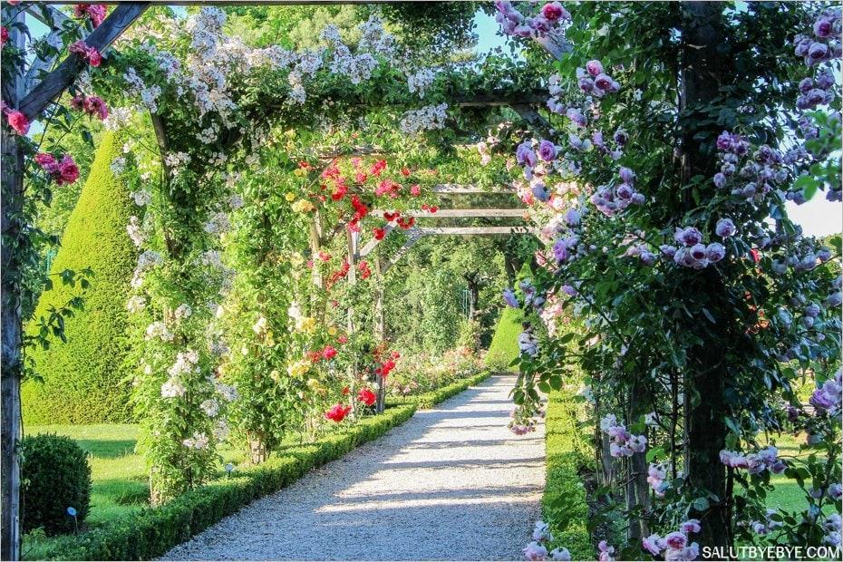 roseraie-bagatelle-paris-04_byespritdefrance.jpg