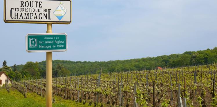 la_route_du_champagne