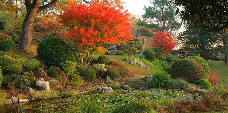 Gardens erik-borja-esprit-de-france