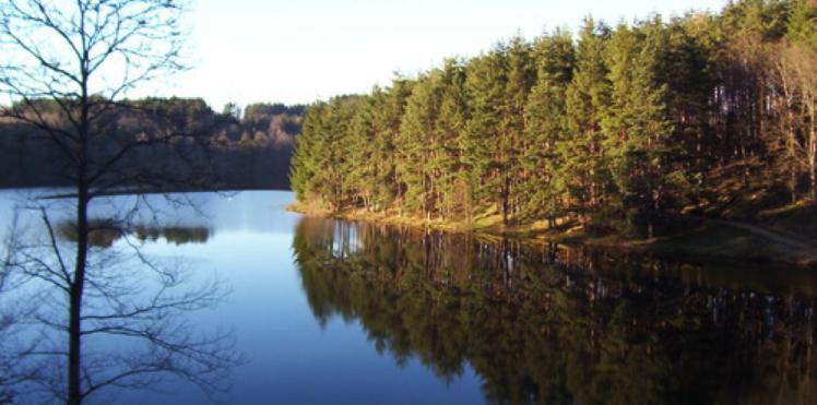 Le lac d'Aubusson