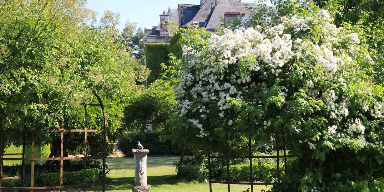 chateau-chambiers-domaine